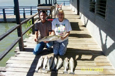 These striper were caught on Lake Buchanan with Rick Ransom Striper Guide on October 14, 2003